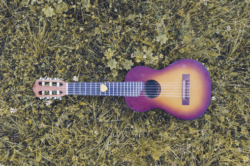 Ukulele lying on grass, top view - RSGF00030