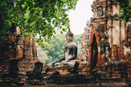 Thailand, Ayutthaya, Buddha statue surrounded by brick pagodes at Wat Mahathat - GEMF02469