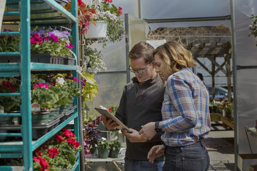Coworkers using tablet computer while standing by shelves in garden center - CAVF53380