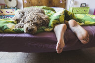 Low section of woman with dog sleeping on bed at home - CAVF53488
