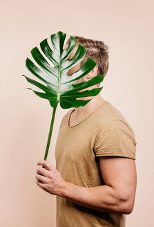 Close-up of man holding leaf over pastel background. - INGF06373
