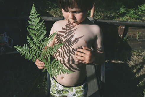 Shirtless boy playing with leaves shadow at backyard - CAVF54038