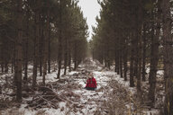 Carefree girl sitting amidst trees at forest during winter - CAVF54047