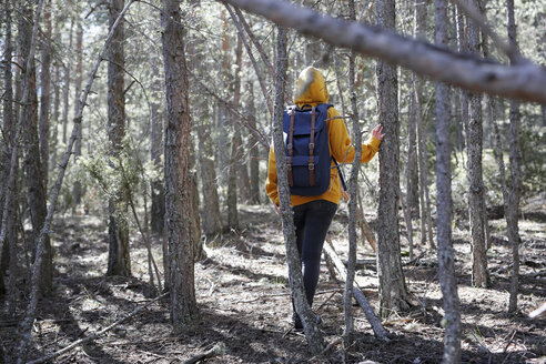 Rear view of young woman with yellow sweater and blue bag in the forest, exploring - GRSF00007
