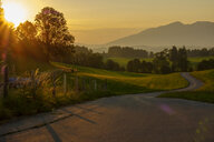 Germany, Bavaria, Allgaeu, East Allgaeu, Swabia, Ammergau Alps and Tannheim Mountains, Ussenburg near Rosshaupten, empty road at sunrise - LBF02206