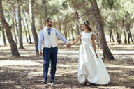Happy bridal couple walking hand in hand in pine forest - JSMF00590