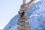 Germany, Upper Bavaria, Garmisch-Partenkirchen, Alpspitze, Osterfelderkopf, sign posts - TCF05951