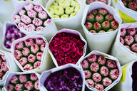 China, Hong Kong, bouquets of colourful flowers at the flower market - GEMF02517