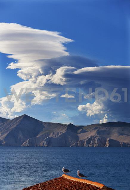 Croatia, Kvarner Gulf, Baska, Clouds and coast, doves on roof - WWF04426