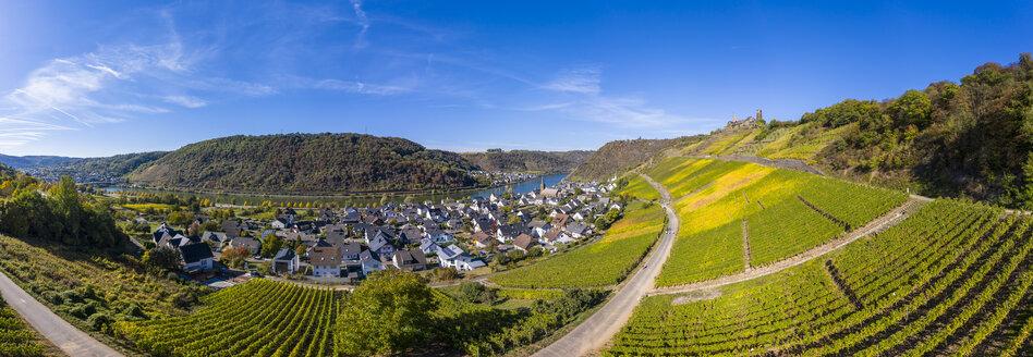 Germany, Rhineland-Palatinate, Mayen-Koblenz, Moselle, town Alken with Thurant Castle, vineyards - AMF06196