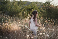 Girl with pigtails walking amidst dandelion field - CAVF54324