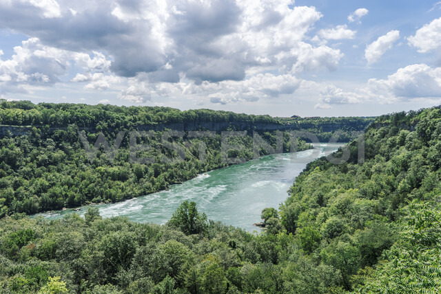 Scenic view of river amidst trees at Niagara Glen Nature Reserve against sky - CAVF54348