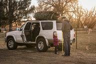 Daughter looking at father while standing against car with Christmas Tree on roof - CAVF54889