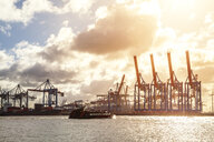 Germany, Hamburg, Cranes at the harbour - PUF01327