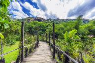 Fiji Islands, Lautoka, Garden of the Sleeping Giant, empty way - THAF02346