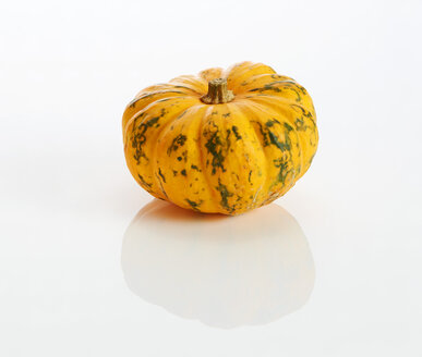 Yellow ornamental pumpkin on white ground - KSWF01981