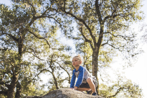 Low angle view of boy looking away while sitting on rock against trees - CAVF55025