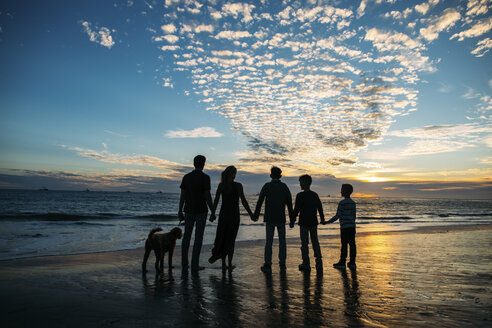 Rear view of family holding hands while standing by dog against cloudy sky at beach during sunset - CAVF55085