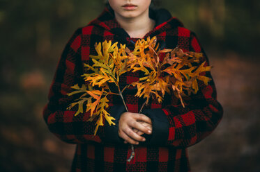 Midsection of girl holding autumn leaves at park - CAVF55697