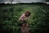 Boy picking plants while kneeling on field - CAVF55718
