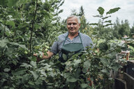 Gardener at apple tree in garden - VPIF01131