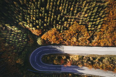 Austria, Lower Austria, Vienna Woods, Exelberg, aerial view on a sunny autumn day over a winding mountainroad - HMEF00104
