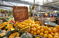 Uruguay, Montevideo, fruit on a market - SSCF00004