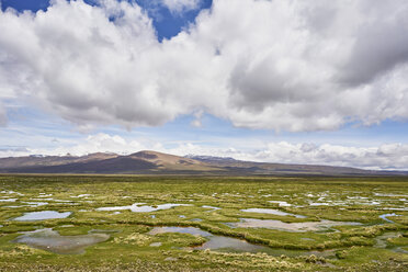 Peru, Chivay, Colca Canyon, swamp landscape in the Andes - SSCF00061
