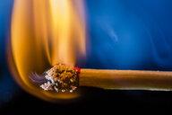 Burning matchstick, macro - HMEF00112