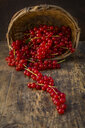 Red currants in basket on wood - LVF07563