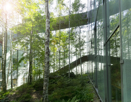 Germany, Hannover, greening, trees and bridge in the courtyard of an office building - KLRF00750