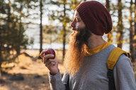 USA, North California, bearded man eating an apple in a forest near Lassen Volcanic National Park - KKAF02979