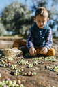 Boy playing with olives in olive orchard - JRFF02127