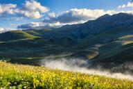 Italy, Umbria, Sibillini National Park, Piano Grande di Castelluccio di Norcia at sunrise - LOMF00756
