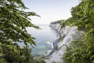 Germany, Mecklenburg-Western Pomerania, Ruegen, Jasmund National Park, chalk cliff - MAMF00236