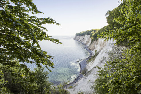 Germany, Mecklenburg-Western Pomerania, Ruegen, Jasmund National Park, chalk cliff - MAMF00236