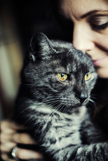 Portrait of grey tabby cat and owner - JATF01068
