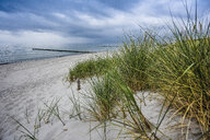 Germany, Mecklenburg-Western Pomerania, Zingst, beach and clouds - FDF00252