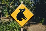 Australia, Magnetic Island, Koala Animal Crossing Sign - GEMF02567