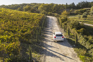 Italy, Tuscany, Siena, car driving on dirt track through a vineyard - FBAF00179