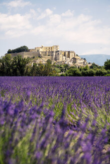 France, Grignan, view to the village with lavender field in the foreground - GEMF02597