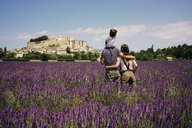 France, Grignan, back view of familiy standing in lavender field looking to the village - GEMF02606