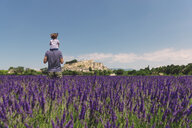 France, Grignan, back view of father standing in lavender field with little daughter on his shoulders - GEMF02612