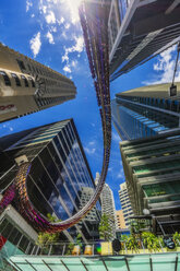 Australia, New South Wales, Sydney, High-rise buildings, low angle view against the sun - THAF02373