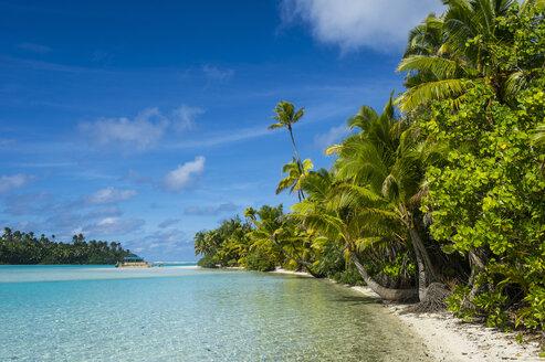 Cook Islands, Rarotonga, Aitutaki lagoon, white sand beach and palm beach - RUNF00286