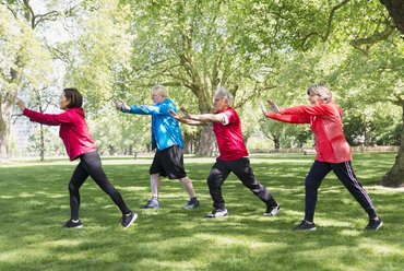 Active senior friends practicing tai chi in park - CAIF22330