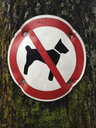 No Dogs Allowed - WWF04509