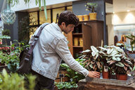Young male customer looking at potted plants in store - MASF10227