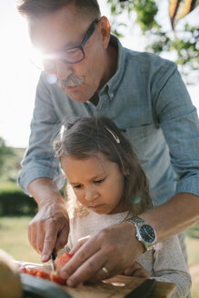 Grandfather teaching granddaughter to cut tomato at table in backyard - MASF10284