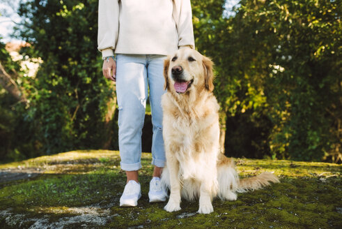 Woman next to Golden retriever dog sitting on a meadow - RAEF02229